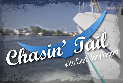 Chasin' Tail TV